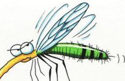 Folytatódik a szúnyogirtás a kerületben