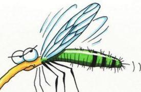 FONTOS! Újabb változás a szúnyogirtásban