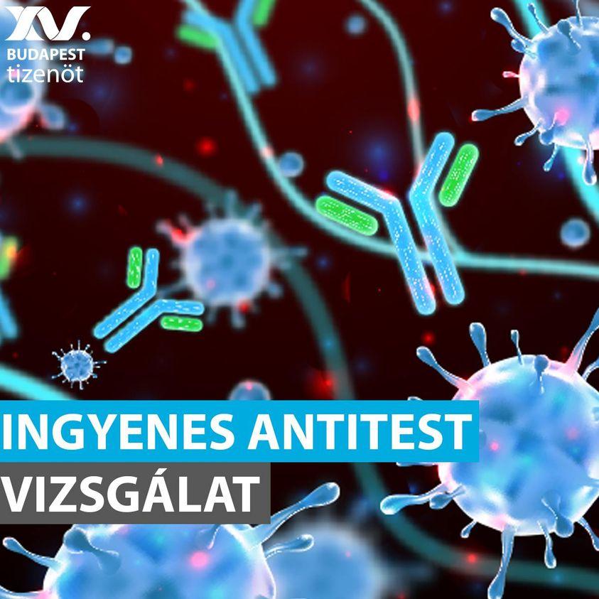 Felhívás ABBOTT SARS-CoV-2 IgG II Quant Assay ingyenes mintavételre